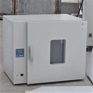 臺式電熱恒溫鼓風干燥箱