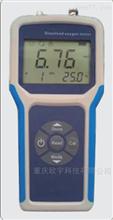 RY-830BX便攜式溶解氧分析儀