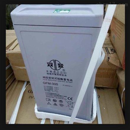 双登铅酸免维护蓄电池12V190AH