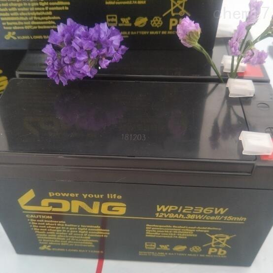 LONG广隆蓄电池WP1236W技术应用