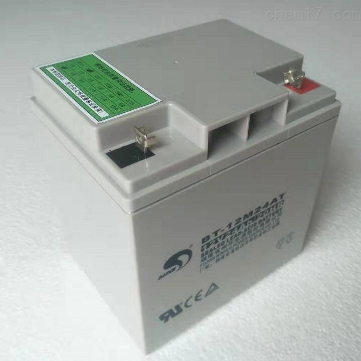 赛特蓄电池BT-12M24AT含税运