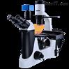 澳浦倒置荧光显微镜