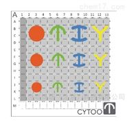CYTOO微图案芯片CHIPS™YL-FN X18