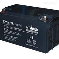 12V65AH三力蓄电池PK65L-12区域报价