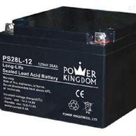 12V28AH三力蓄电池PS28L-12全新