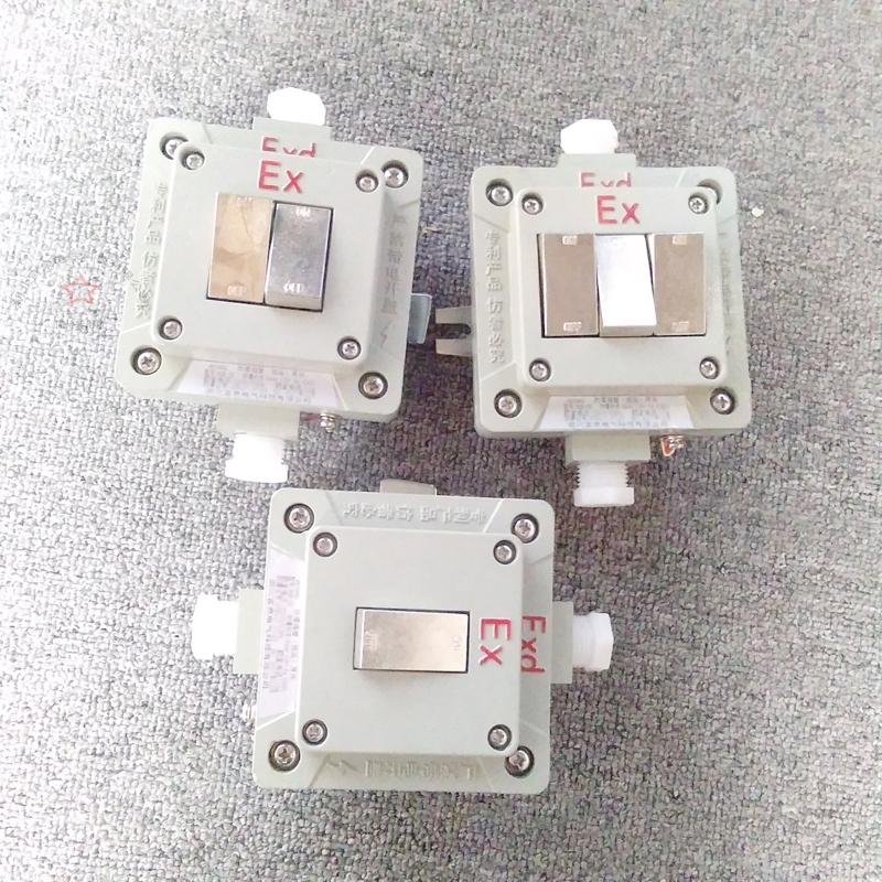 BQM-10A双联单控翘板式防爆墙壁照明开关EX