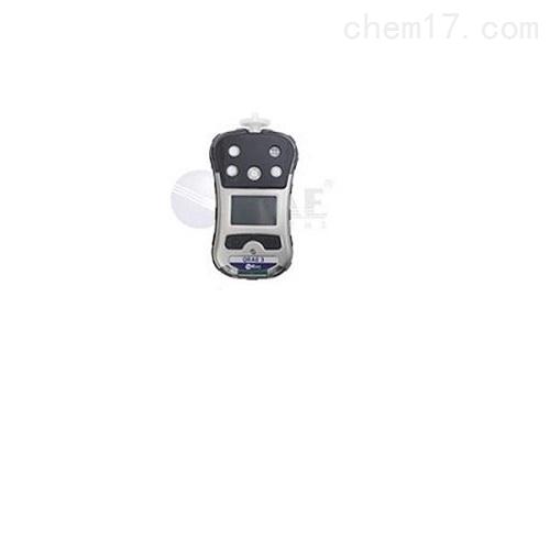 四合一气体检测仪PGM-2500