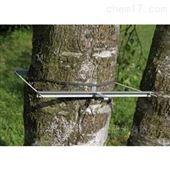 DD-L树干直径生长变化传感器