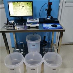 ZP-XSL硬质泡沫吸水率测定仪