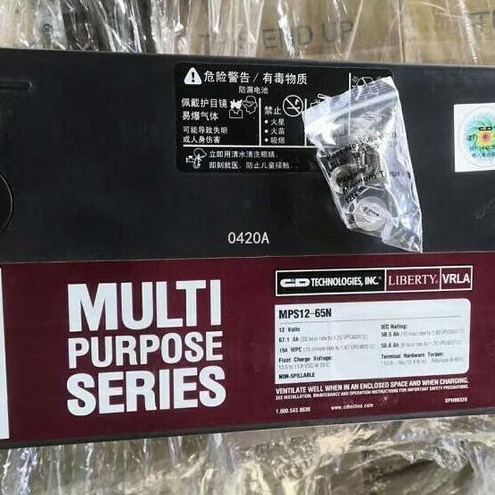 大力神蓄电池MPS12-65N现货