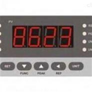 NS-YB04C型测量显示控制仪