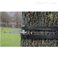 树干周长生长变化传感器