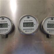 数字温度显示表厂家