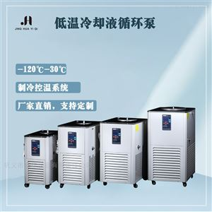 DLSB-2低温冷却液循环泵