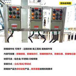 带急停控制按钮防爆操作柱远程控制电箱