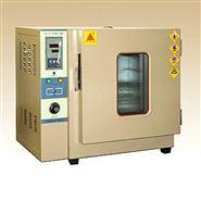 实验厂WG2020高温试验箱