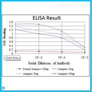 Anti-HIF-Alpha antibodySTJ98135