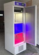 303-00A霉菌培养箱