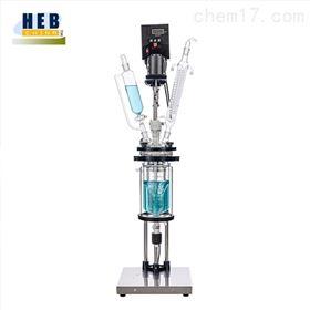 2L双层玻璃反应釜(器)HEB-2L