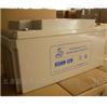 雄狮蓄电池38AH-12V高频应急电池参数报价