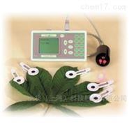 植物效率分析仪