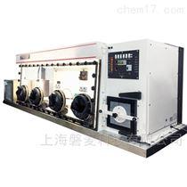 AW800TGRF4P-C双工位全温型厌氧/微需氧工作站