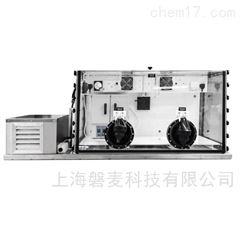 AEP全溫型厭氧/微需氧工作站