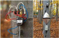 多通道树木连续生长及茎流测量系统