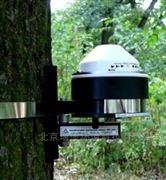 DRL26C树木连续生长测量仪