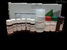 EC30111Evergreen 乳鐵蛋白檢測試劑盒
