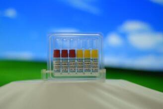 肝微粒体代谢表型
