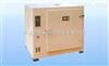 101S-2不锈钢内胆鼓风干燥箱