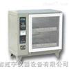 ZFX-51自控砖瓦泛霜箱价格厂家型号技术参数使用方法