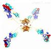 ProM2® APCProImmune 單體的鏈霉親和素APC