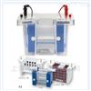 垂直电泳二维(2D)系统E2010-P2